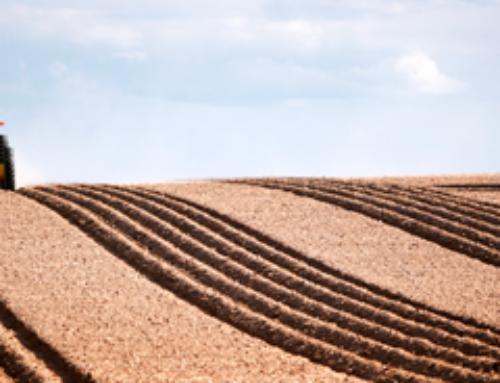 Fundación Lafer, Asaja Cuenca y Foro Interalimentario lanzan el curso de Gestión estratégica de explotaciones agrícolas y ganaderas